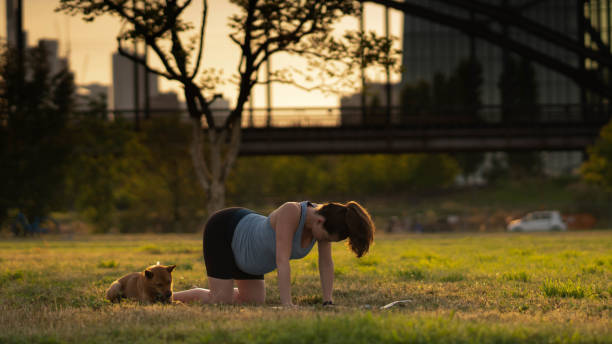 Beautiful Sporty Fit Yogini Pregnant Woman Practices Yoga Asana Bitilasana Cow Pose Gentle Warm Up For Spine In In A Park With A Dog Stock Photo Download Image Now Istock