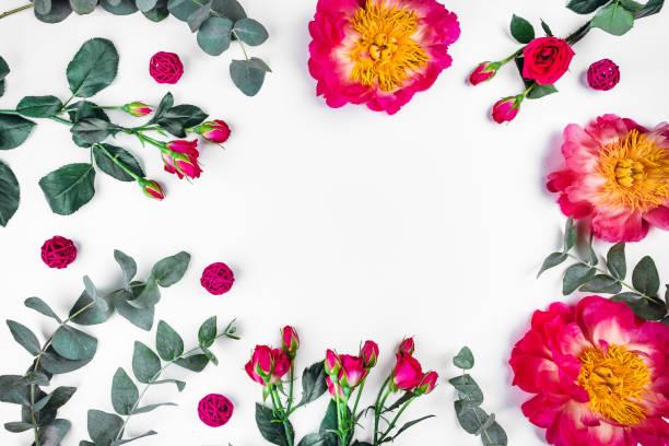 Beautiful sprigs of eucalyptus peonies and roses on white background picture id1170483793?b=1&k=6&m=1170483793&s=612x612&w=0&h=m89jibrrps edzb0ube6xc5pcmeoslshum2ykrploq0=