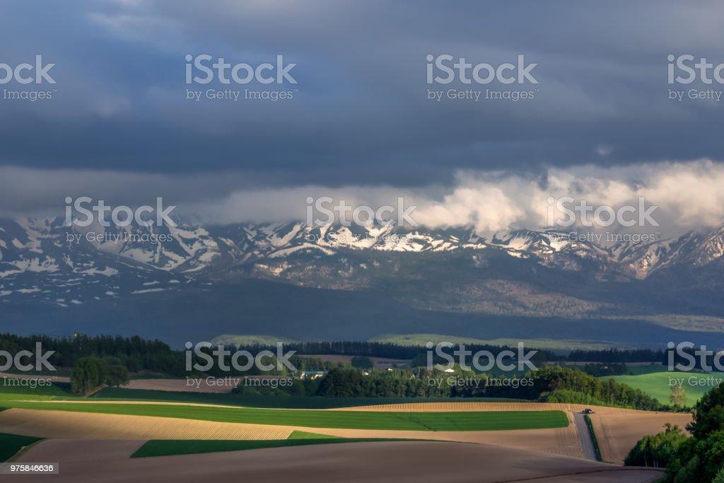 Schöner Frühling Biei hill - Lizenzfrei Agrarbetrieb Stock-Foto