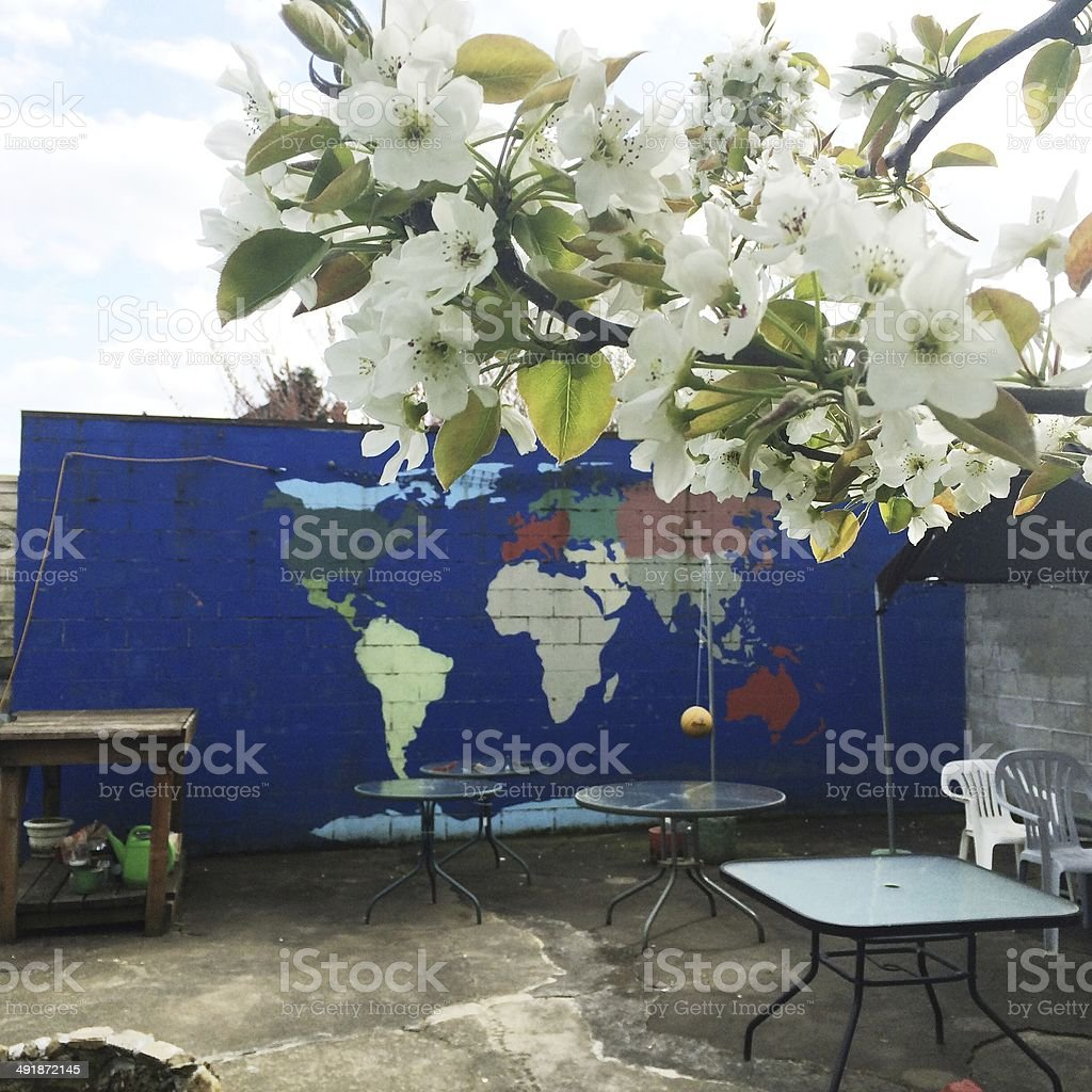 Beautiful Spring Flower Blossoms Back Yard Patio stock photo