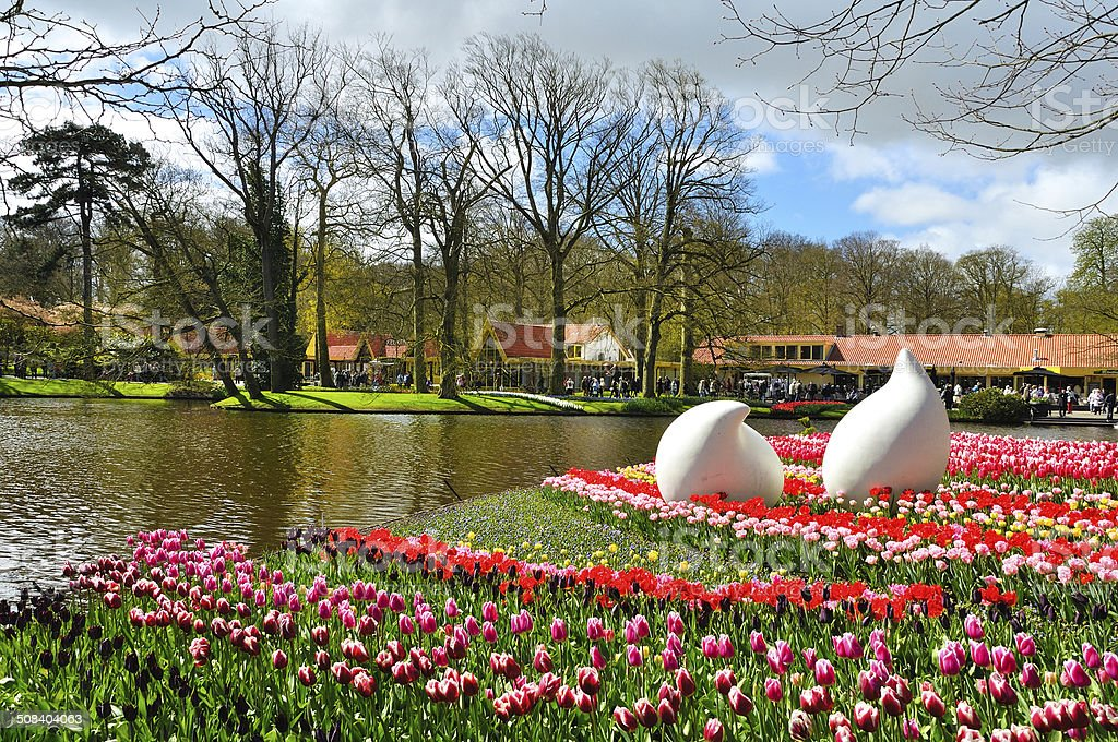 Beautiful spring flowers in Keukenhof park stock photo