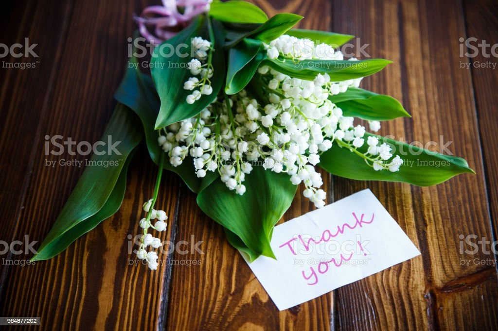 Beautiful spring flowers lily of the valley royalty-free stock photo