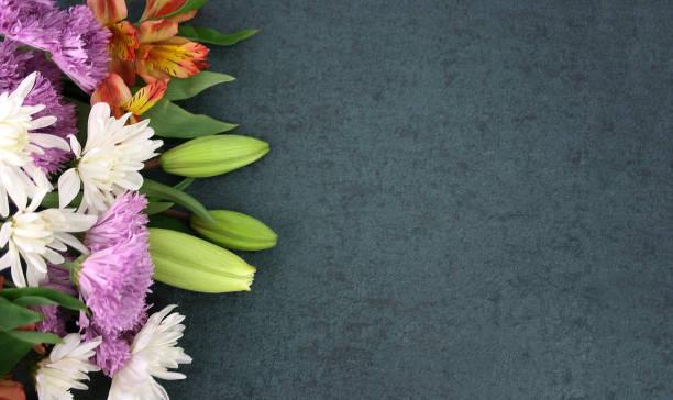 Beautiful spring flowers over blackboard background picture id928066178?b=1&k=6&m=928066178&s=612x612&w=0&h=dgszi5xfx6b i3feznnkrko eqentrxz1177ud7ckyw=