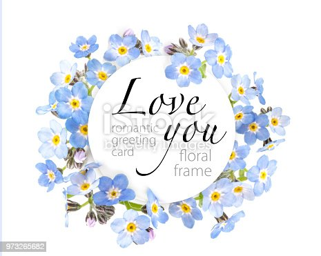 istock Beautiful spring forget-me-nots flowers Isolated on white background. Top view. Romantic greeting card. Copy space 973265682