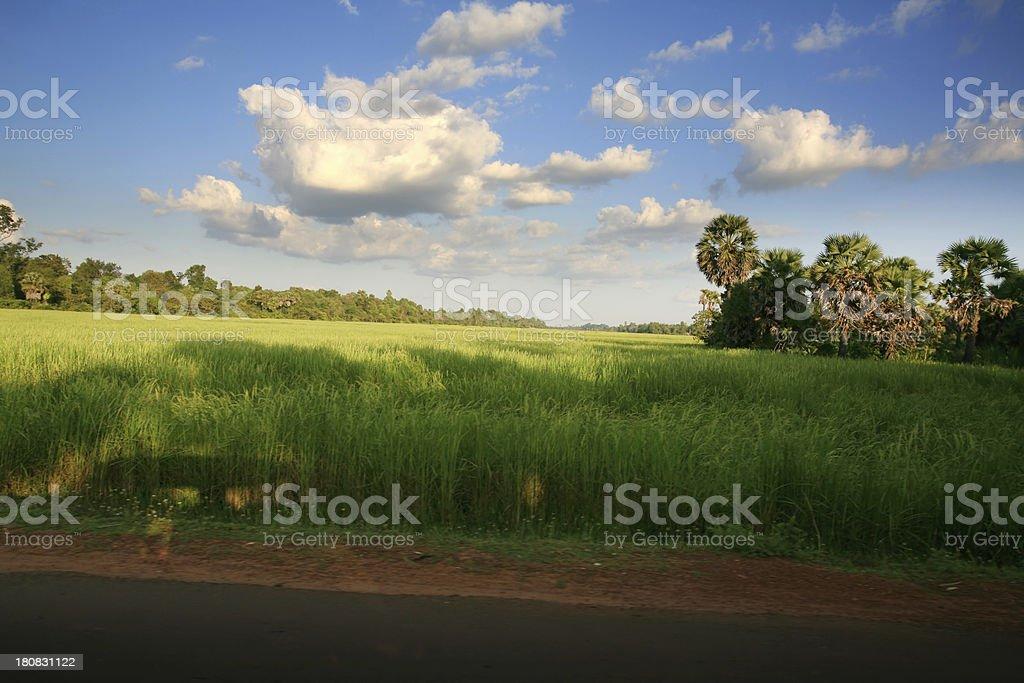 Beautiful Spring Landscape royalty-free stock photo