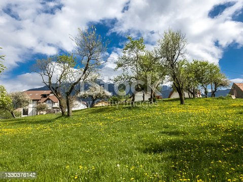 istock Beautiful  spring landscape with green field and dramatic razor sharp cloudy sky and warm sun rays 1330376142