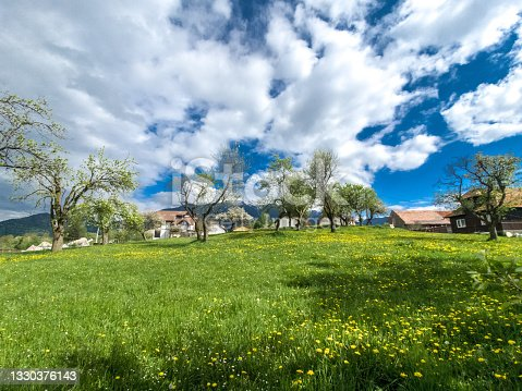 istock Beautiful  spring landscape with green field and dramatic razor sharp cloudy sky and warm sun rays 1330376143
