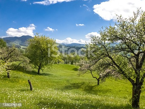istock Beautiful  spring landscape with green field and dramatic razor sharp cloudy sky and warm sun rays 1330376145