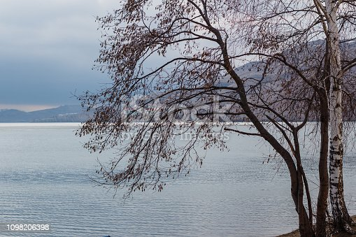 beautiful spring landscape with lake view, birch on the shore, Russia