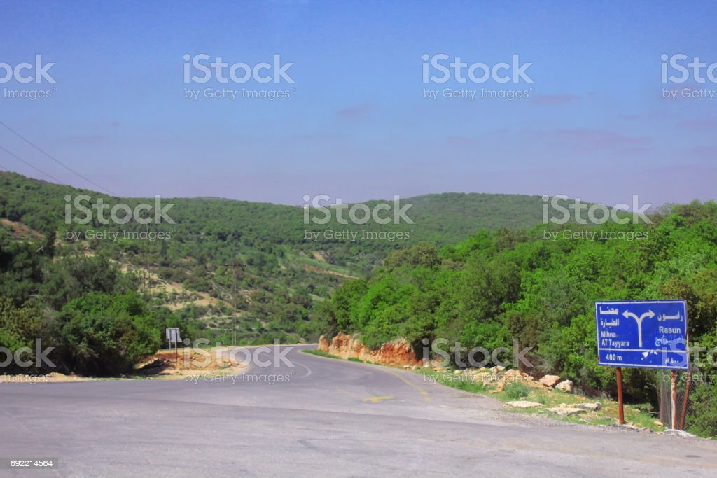 Beautiful spring landscape with mountain of trees stock photo
