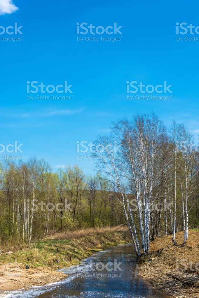 Beautiful spring landscape with the river. royalty-free stock photo