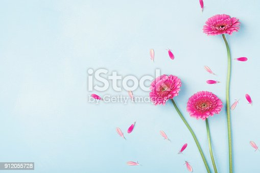 istock Beautiful spring pink flowers on blue pastel table top view. Floral border. Flat lay. 912055728