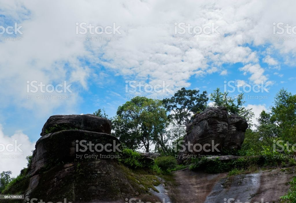 beautiful stone cliff with forest and mountain background royalty-free stock photo