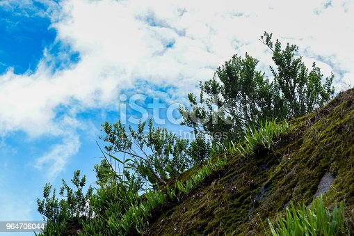 Beautiful Stone Cliff With Forest And Mountain Background Stock Photo & More Pictures of Cliff