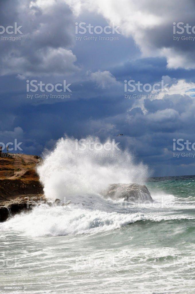 Beautiful storm on the sea beach stock photo
