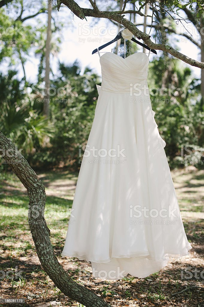 Beautiful Strapless Wedding Dress Hanging From A Tree Outdoors Royalty Free Stock Photo