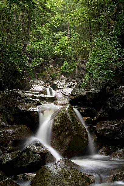 Beautiful Stream along trail at Franconia Notch New Hampshire stock photo
