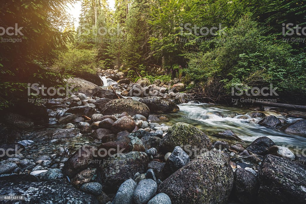 Beautiful stream in mountains stock photo