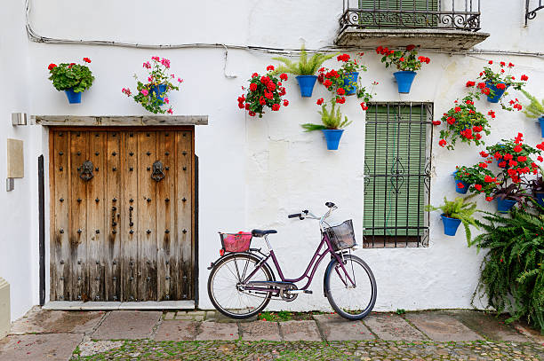 Beautiful Street in Cordoba Beautiful Street of Cordoba. Cordoba is a beautiful city in the south of Spain. Whitewashed houses walls are decked out with flowers in terracotta pots. A purple color bicycle stands on the house. cordoba spain stock pictures, royalty-free photos & images