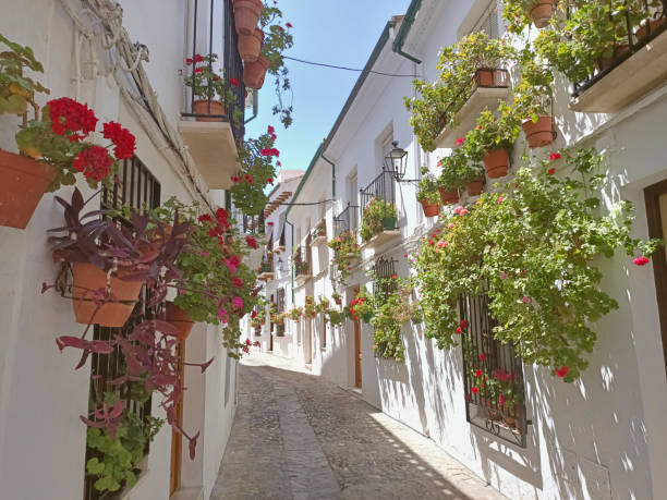 Beautiful streets full of flowers in old town of Priego de Córdoba Andalusia Spain Beautiful streets full of flowers in old town of Priego de Córdoba Andalusia Spain cordoba spain stock pictures, royalty-free photos & images