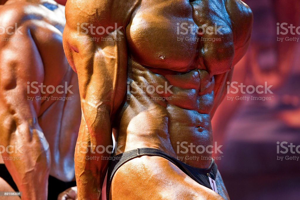 Beautiful strong bodies royalty-free stock photo
