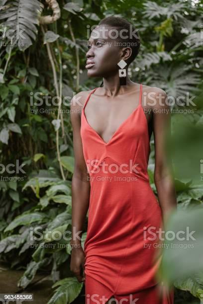 Hermosa Chica Con Estilo Afro Americana Con Pelo Corto Posando En Vestido Rojo En Jardín Foto de stock y más banco de imágenes de A la moda