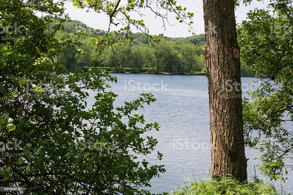 Beautiful summer day at a pond stock photo
