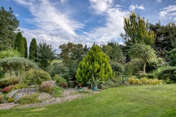 Beautiful summer garden concept stock photo