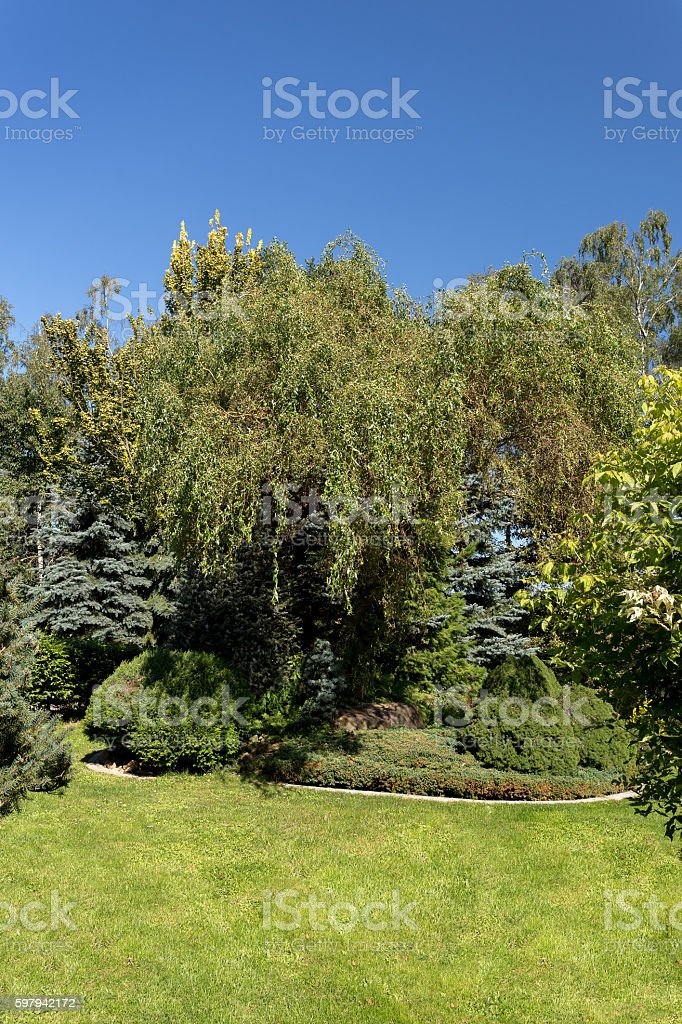 Beautiful summer garden design foto royalty-free