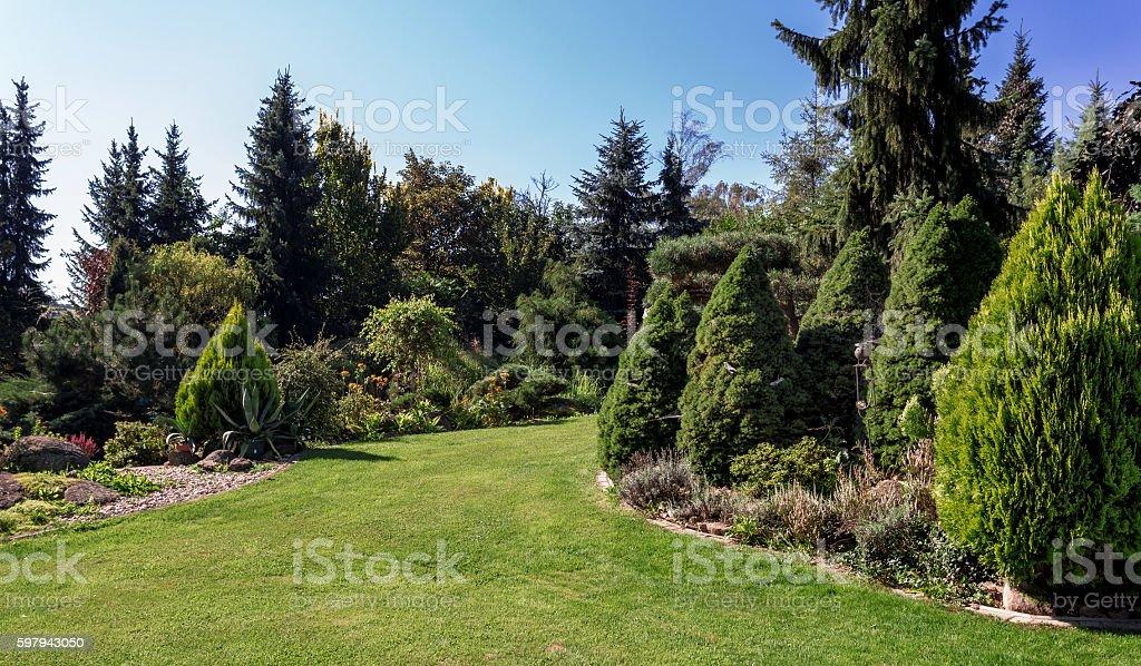 Beautiful summer garden design foto royalty-free