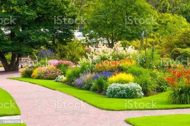 Photo of Beautiful summer garden