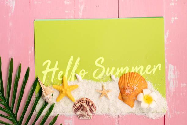 mooie zomervakantie, strand accessoires, schelpen, zand en palm verlof op papier voor kopieerruimte - pink and orange seashell background stockfoto's en -beelden
