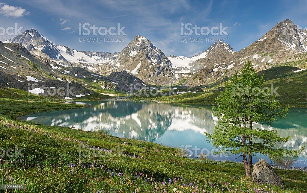 Schönen Sommer Landschaft, Altai mountains Russland. – Foto