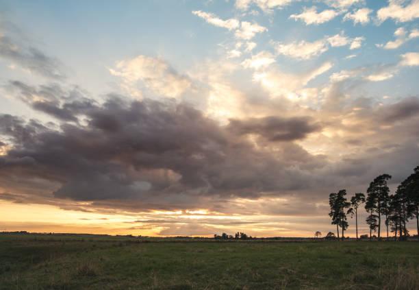 Vackert sommar landskap i solnedgången bildbanksfoto