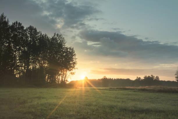 Vackert sommar landskap i Sverige med solen stiger i horisonten bildbanksfoto