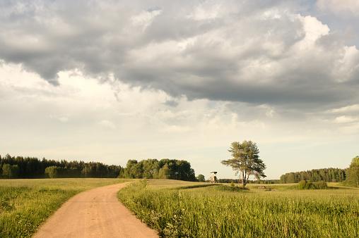 Vackert Sommar Landskap I Svensk Natur Med Cloudscape-foton och fler bilder på Fotografi - Bild