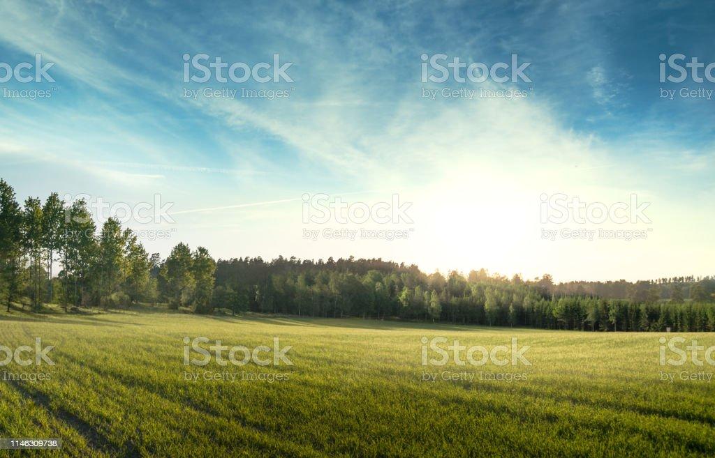 vackert sommar landskap i svensk natur med cloudscape - Royaltyfri Enkelhet Bildbanksbilder