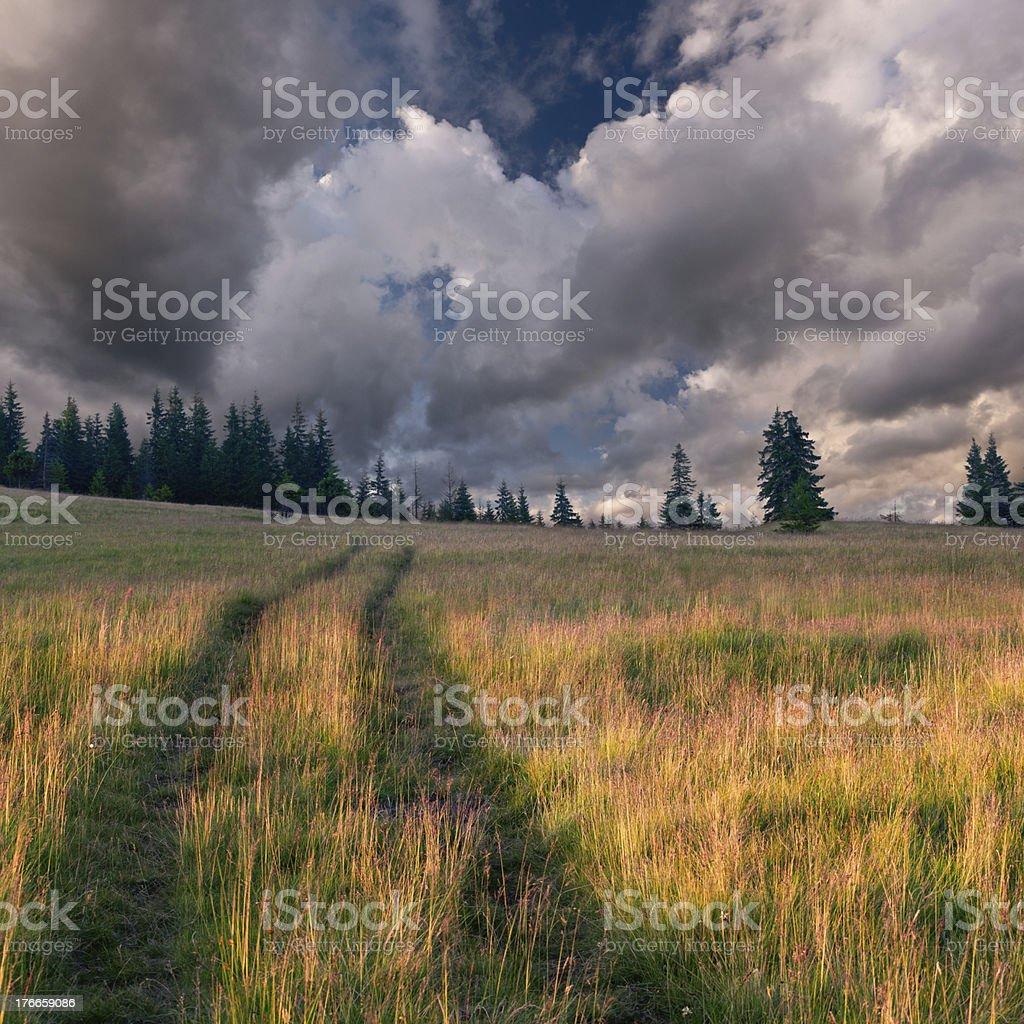 Hermoso paisaje de verano en las montañas foto de stock libre de derechos