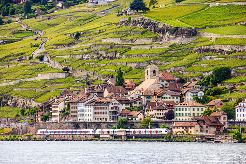 Beautiful Summer landscape of Lake Geneva, Lavaux vineyard terraces and Alps with trains going by, Swiss Riviera, Switzerland, Europe.