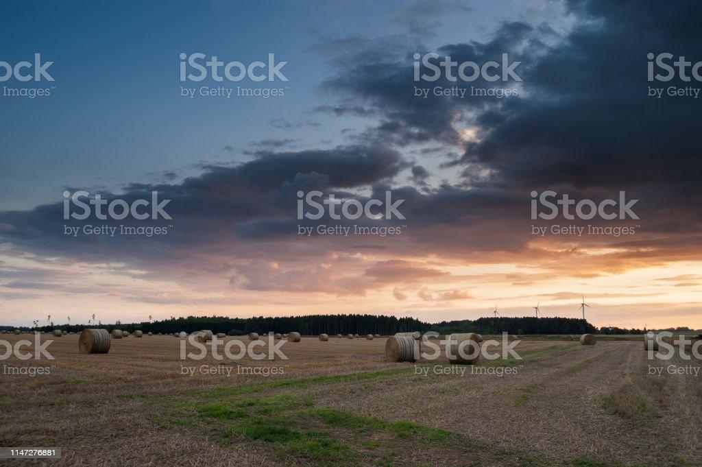 Vackert sommar landskap - Royaltyfri Bal - Odlad Bildbanksbilder