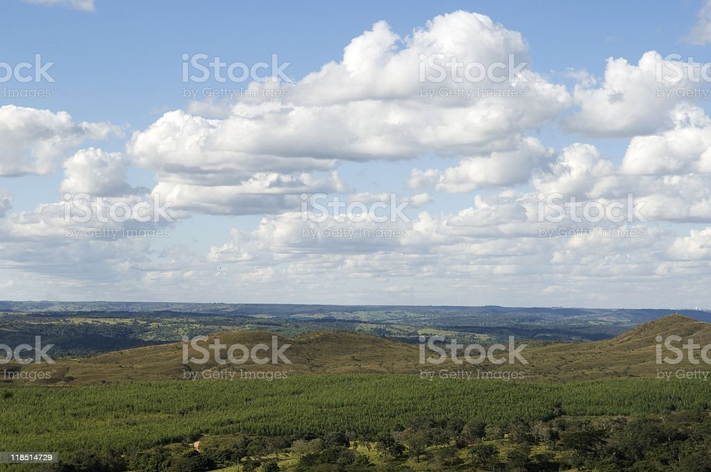 Beautiful summer landscape royalty-free stock photo
