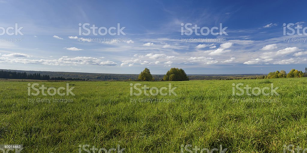 Beautiful summer landscape. The nature. Panorama royalty-free stock photo