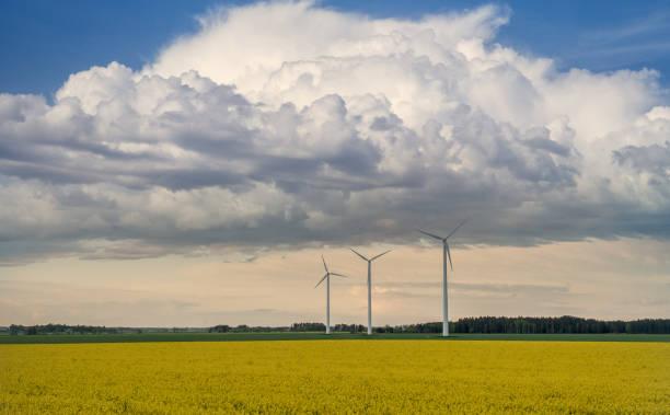 Vackert sommar landskap med vindkraftverk bildbanksfoto