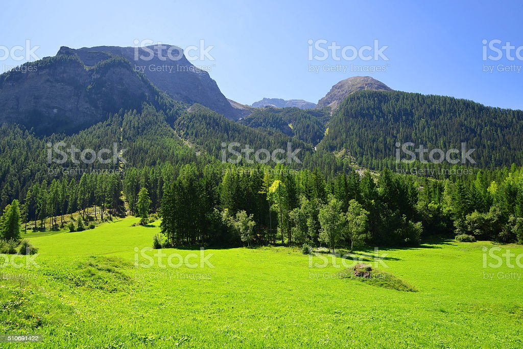 Beautiful summer mountain landscape in Alps stock photo