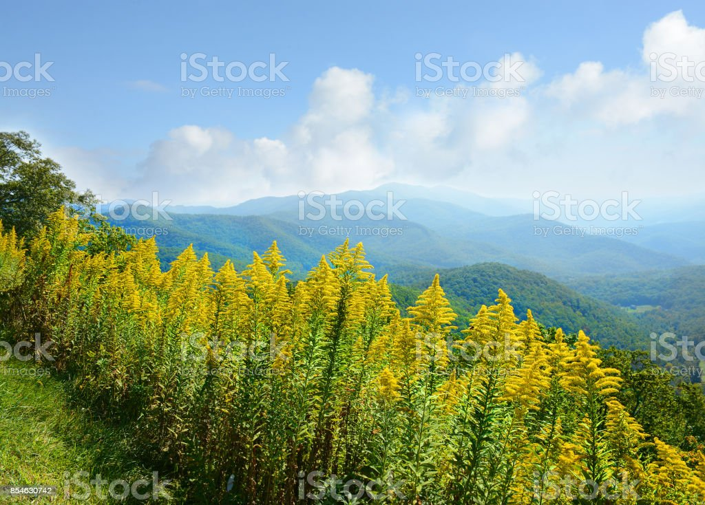 Beautiful summer mountain view. stock photo