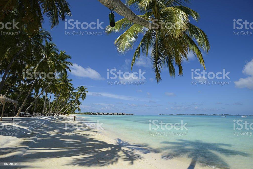 Beautiful Summer Resort stock photo