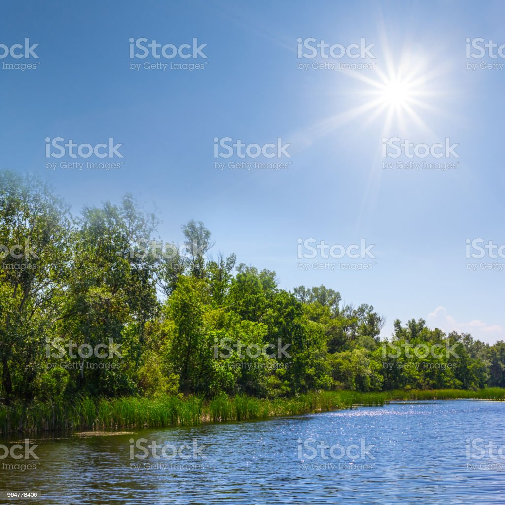 beautiful summer river under a sparkle sun royalty-free stock photo