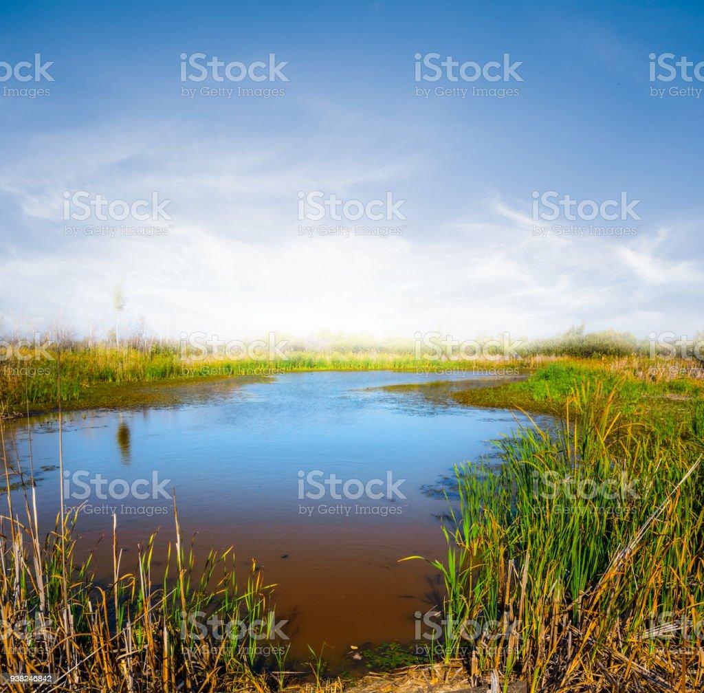 beautiful summer scene, small lake at the sunset stock photo