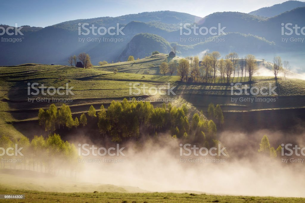 Beautiful summer sunrise in the Transylvanian hills stock photo