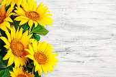 Beautiful sunflowers on a wooden table. View from above. Selective focus. Background with copy space.